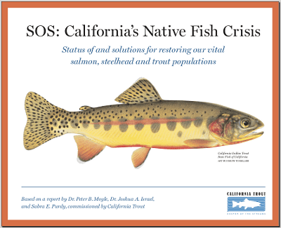 SOS: California's Native Fish in Crisis cover
