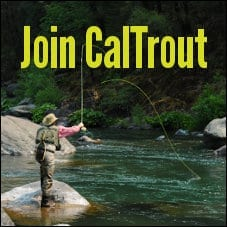 CalTrout's Email List