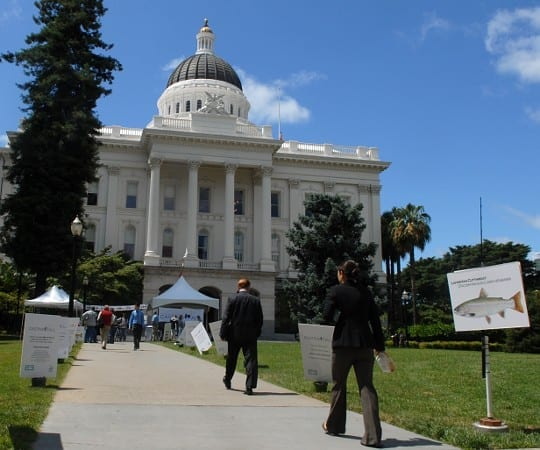Sacramento Legislation and Advocacy Work