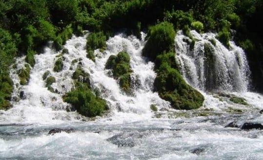 The Upper McCloud River's Big Springs