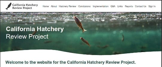 Problems with california 39 s salmon steelhead hatcheries for Sacbee fishing report