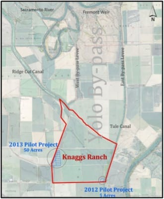 Knaggs Ranch Agricultural Floodplain Study