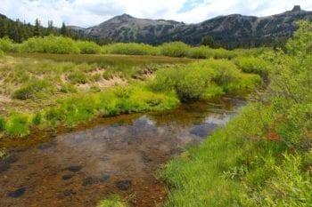 Kirkwood Meadow 2