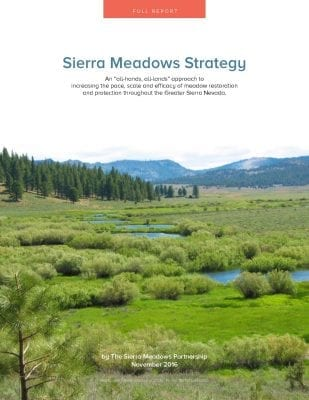 sierra_meadow_strategy_full_report_shareable_cover