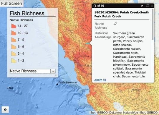 speciesrichnessmap-png