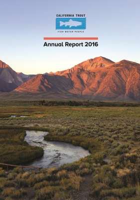 annual-report-2016_page_01_small-icon