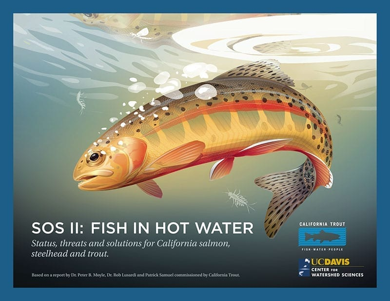 Sos Ii Fish In Hot Water California Trout Inc