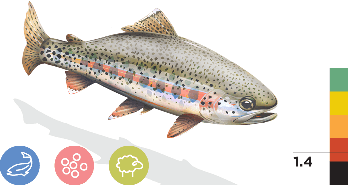 Kern River Rainbow Trout | California Trout, Inc