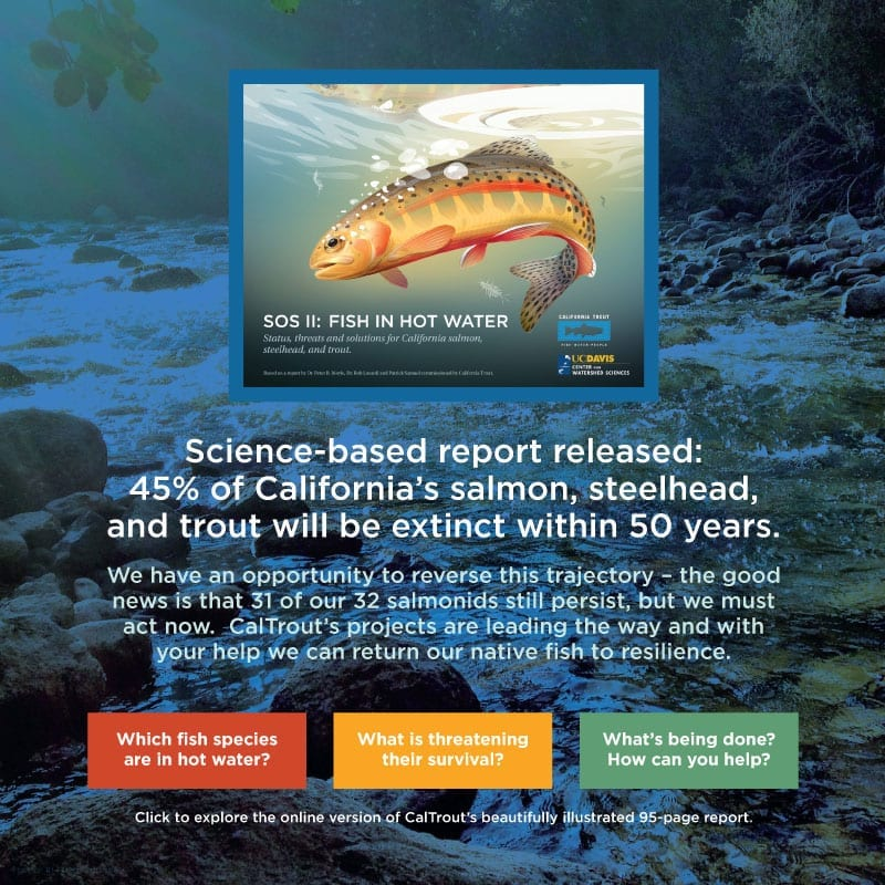 Homepage   California Trout, Inc