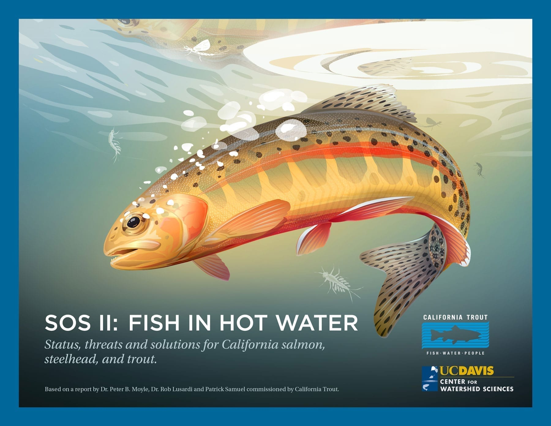 Homepage California Trout Inc - These hilarious posters keep popping up all over california